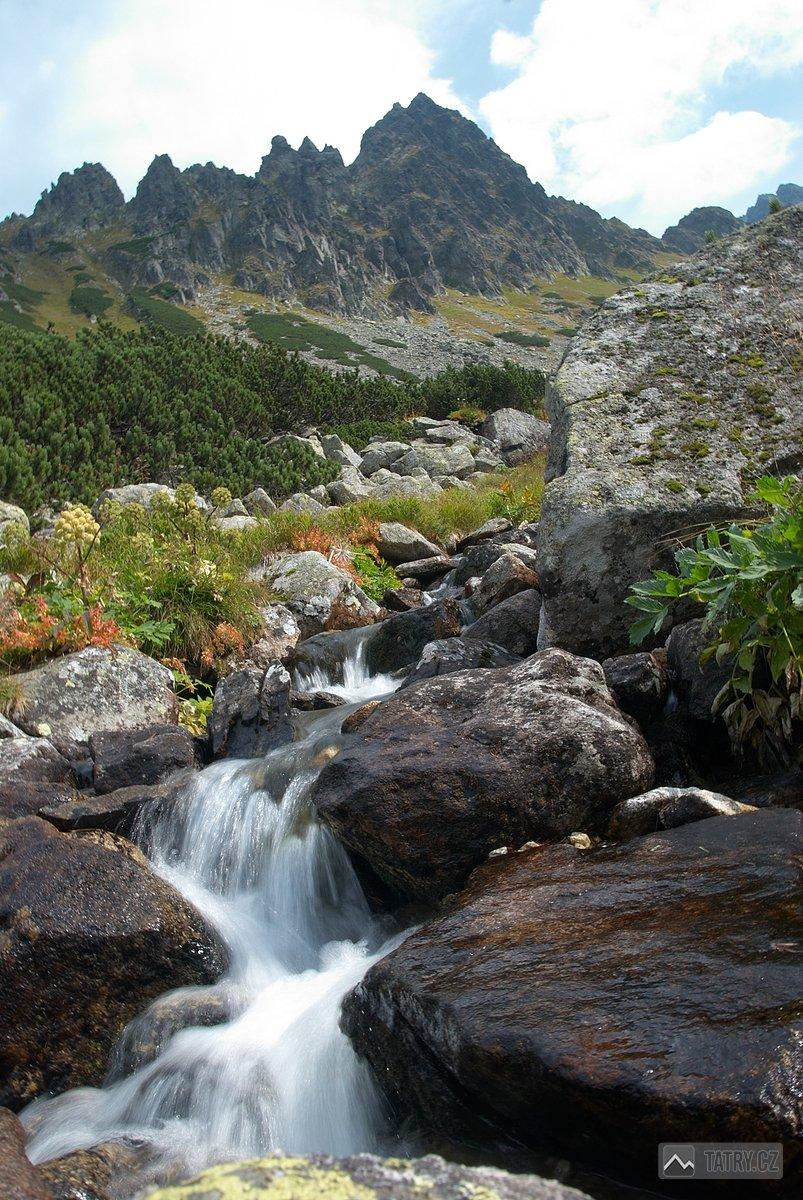 Litvorový potok