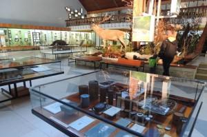 V Muzeu TANAPu