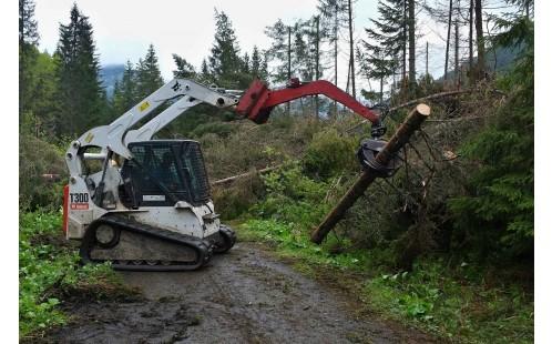 Odstraňování kalamitního dřeva z turistických chodníků