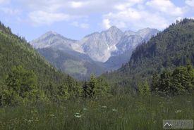 Jahňací a Kolový štít z Tatranské Javoriny