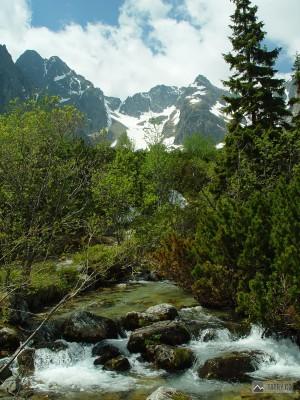 Pyšné štíty, Baranie rohy a Čierny štít z Doliny Zeleného plesa