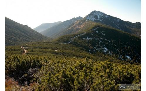 Sivý vrch od sedla Pálenica