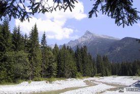 Kriváň od Kôprovského potoku na začátku doliny