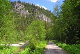 Chodník v Bielovodské dolině