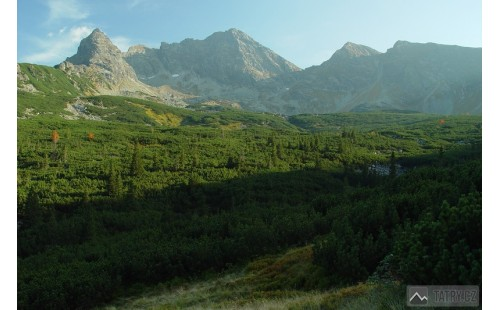 Kościelec, Svinica a Prostredná kopa z Doliny Gąsienicowe