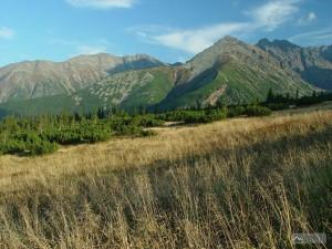 Dolina Gąsienicowa
