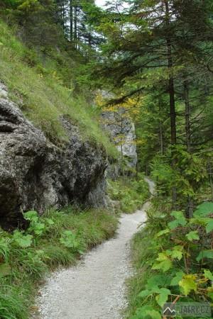chodník v Juráňové dolině