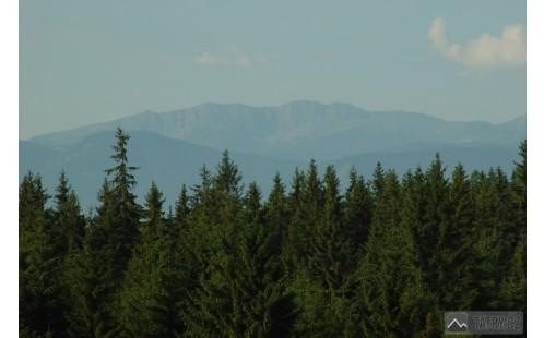 Hlavní hřeben Nízkých Tater z Tatranské magistrály