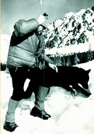 Lavinový pes Udo. Jemu vděčí přeživší student za život