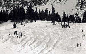 Systematické hledání v laviništi