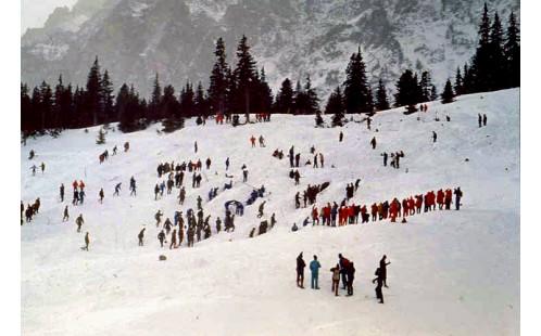 Pátrací skupiny v laviništi