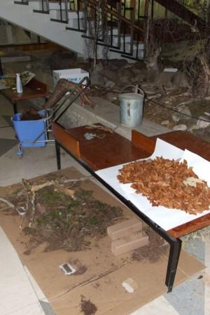 Muzeum TANAPu během úprav expozice