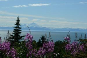 Aljaška, foto: Martin Kornel