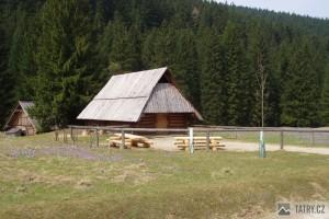 dolina Kościeliska - salaše a šafránové louky